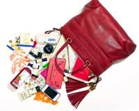 Salma Hayek's bag