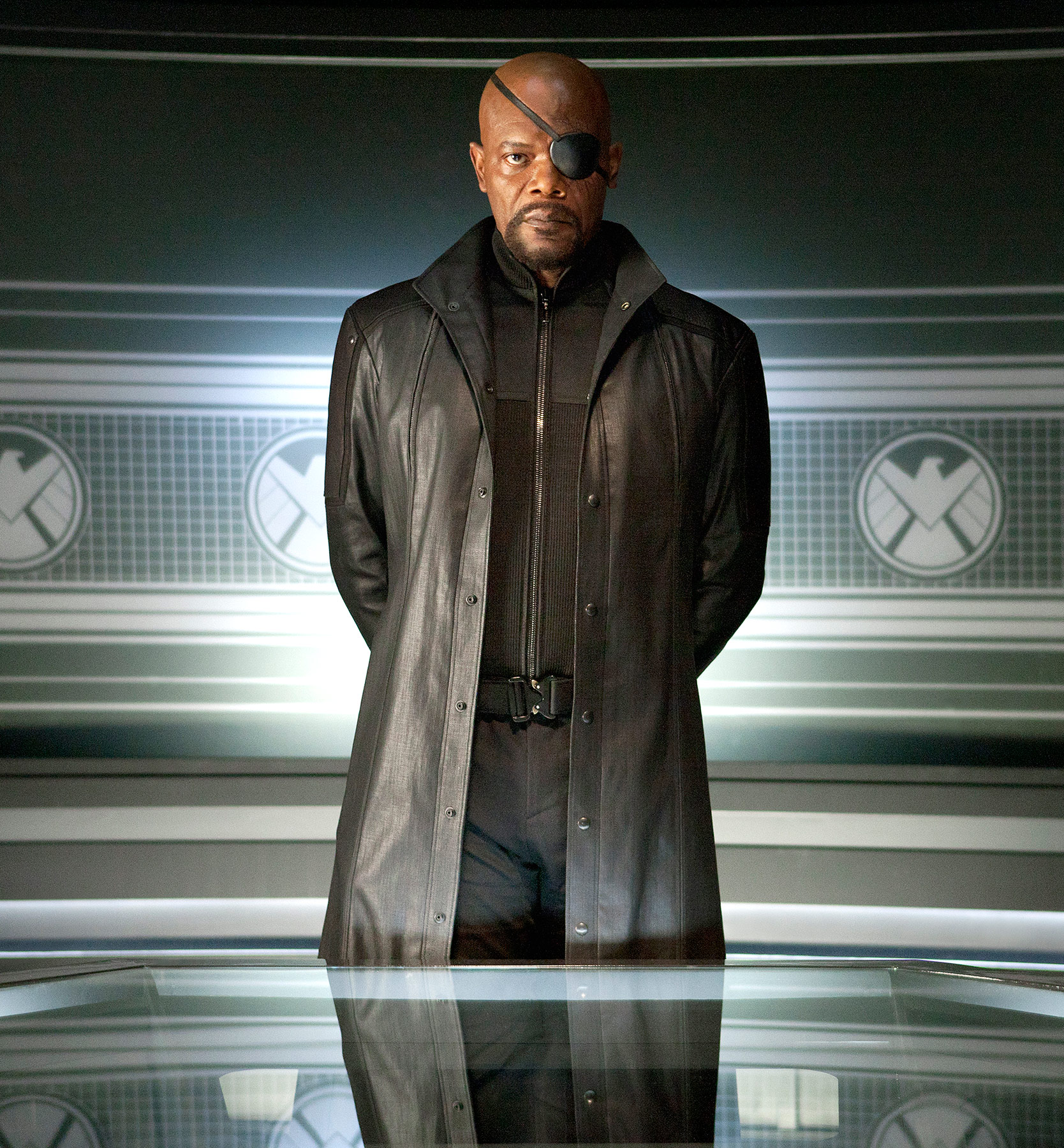 In 2014's Captain America: The Winter Soldier, Samuel L. Jackson reprised his Iron Man and Avengers role as eye-patched S.H.I.E.L.D agent Nick Fury.