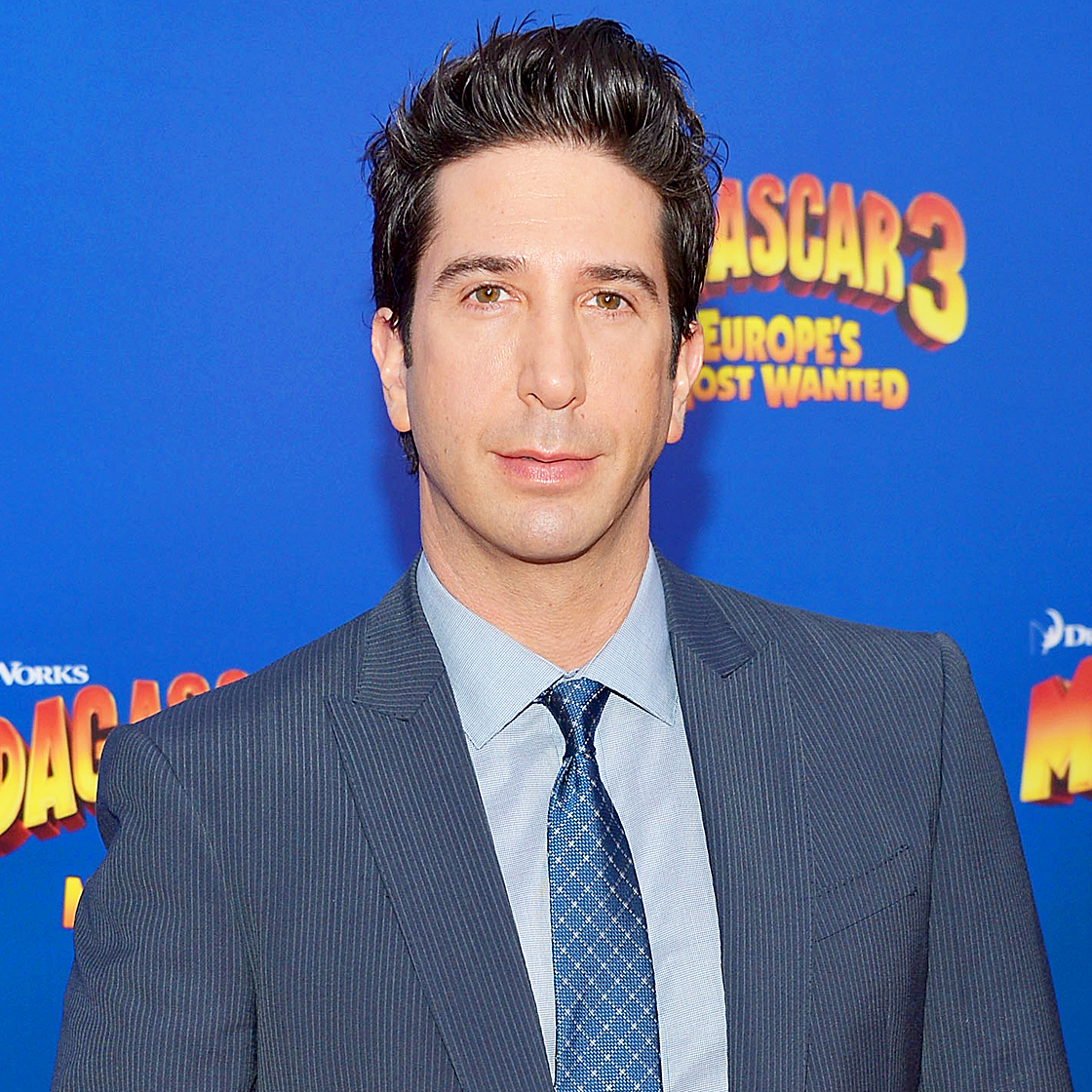 Known to the younger set as the voice of Melman, the giraffe in the animated Madagascar films, Schwimmer made his feature directorial debut with 2007's Run, Fatboy, Run . He has also appeared on Broadway in The Caine Mutiny Court-Martial .