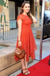 "Rachael Leigh Cook attends the premiere of ""MAX"" on June 23, 2015."