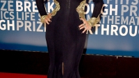 Christina Aguilera's first red carpet appearance since April