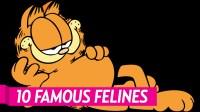 10 Famous Felines