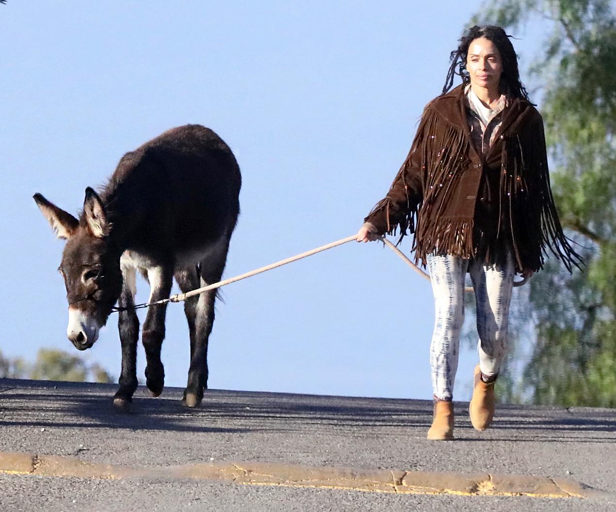 Lisa Bonet donkey