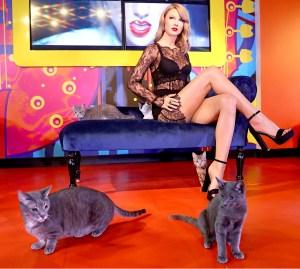 Taylor Swift's wax figure at Madame Tussauds San Francisco