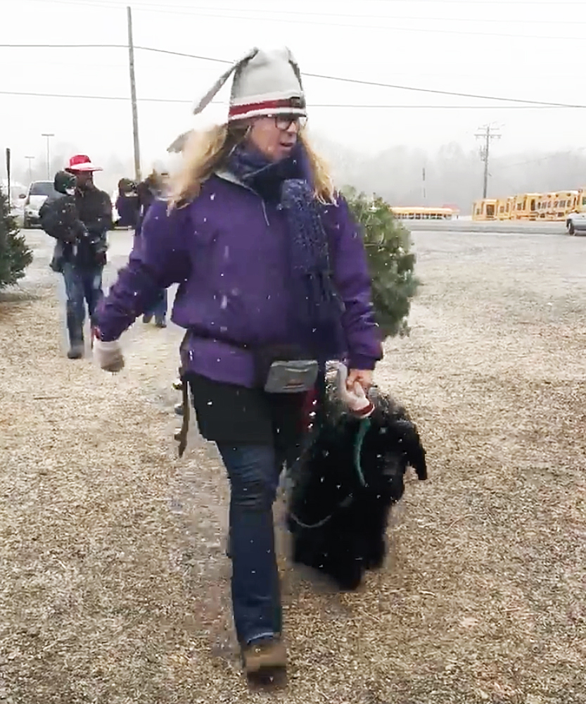 A dogs delivers Christmas trees from Plow Farms