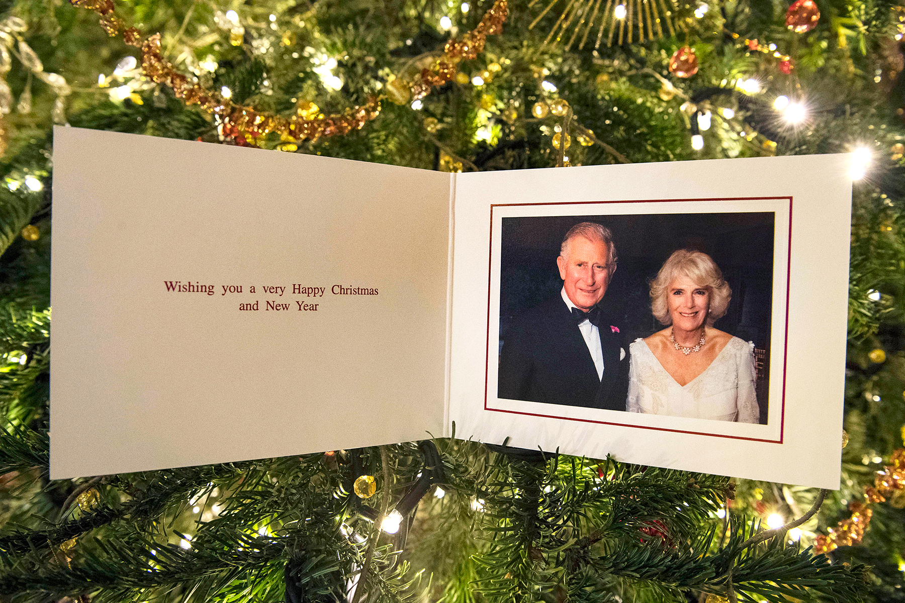Prince Charles Prince of Wales and Camilla Duchess of Cornwall's 2017 Christmas card