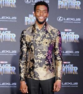 Chadwick-Boseman-Black-Panther-premiere