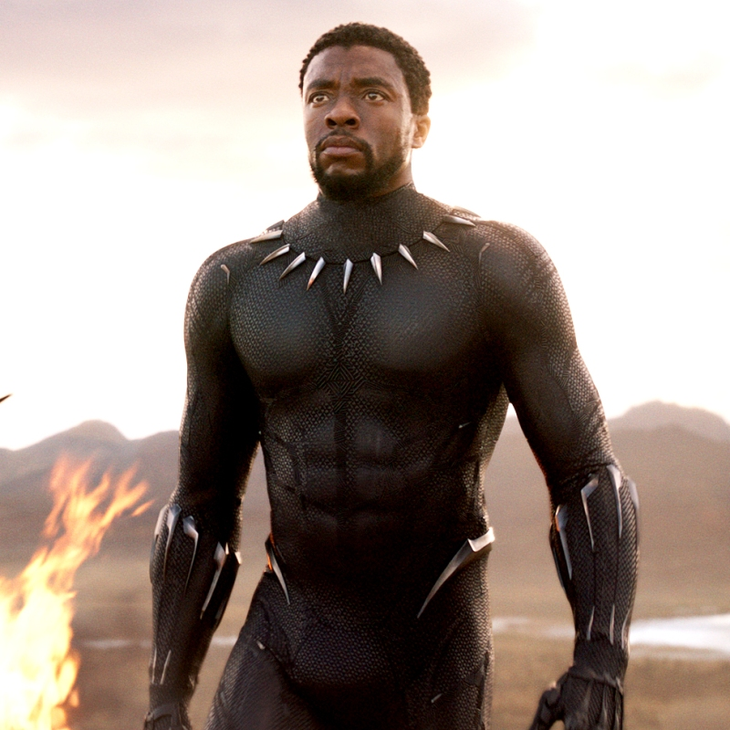 Image result for chadwick boseman black panther