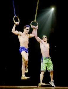 Cirque du Soleil Aerialist Dies After Falling During Show