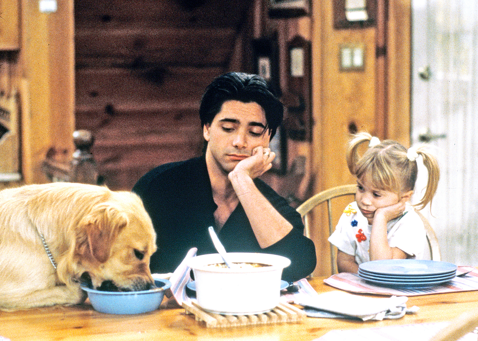 Comet Full House best tv pets
