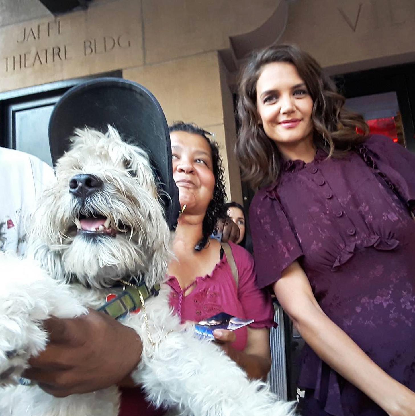 Shaggy celebrity selfie dog Katie Holmes
