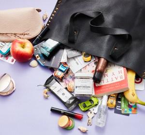 Lindsay-Price-bag