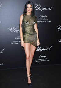 88738a4068d Kendall Jenner Bares Nipples in Two See-Through Dresses at Cannes Film  Festival: 'Oops'