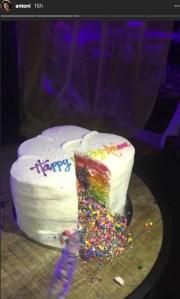 Ariana's Birthday Cake