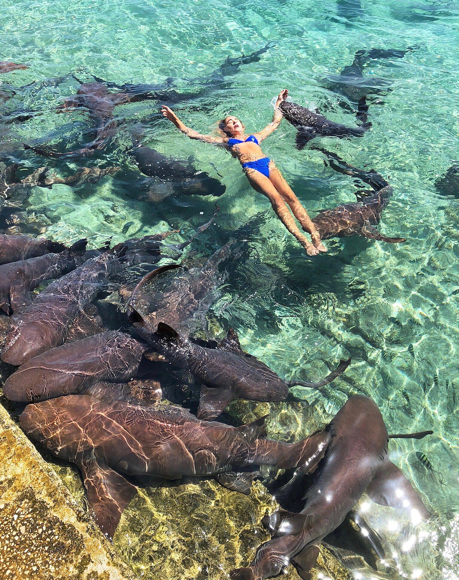 Katarina Zarutskie Photo Shoot Shark Bite