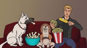 Justin Hartley dog sitting