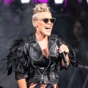 P!nk at the 2017 Summerfest Music Festival.