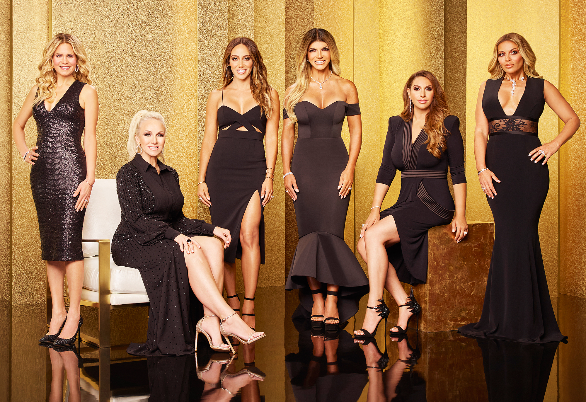 Real Housewives of New Jersey Season 9 Cast