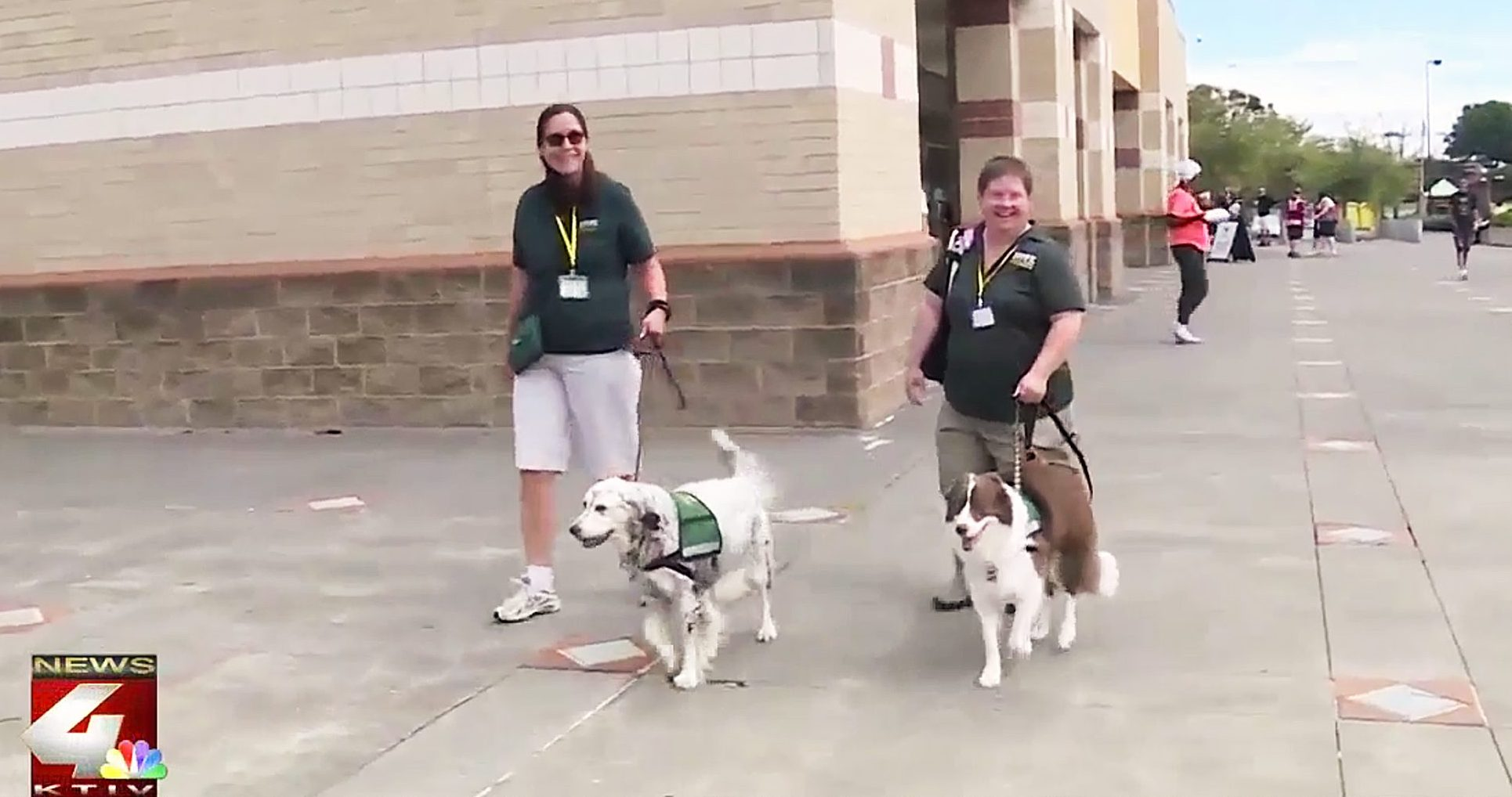Therapy Dogs Hurricane Florence Evacuees