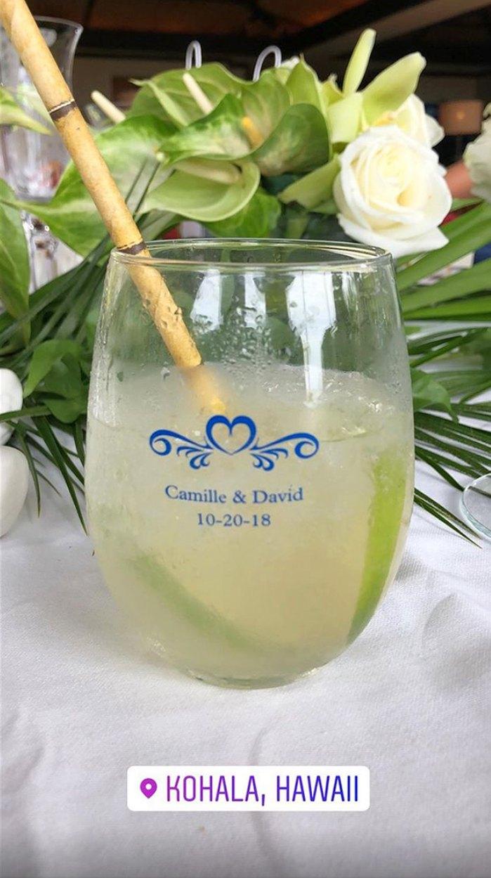Camille Grammer, David C. Meyer, Wedding, Hawaii