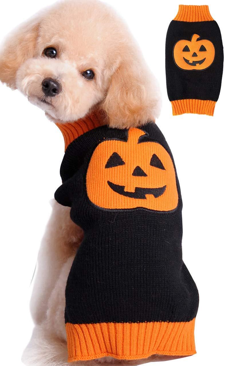 Pumpkin Cat Dog Sweater