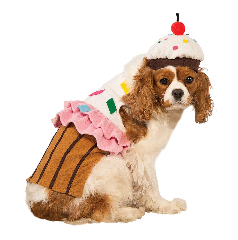 dog cupcake halloween costume