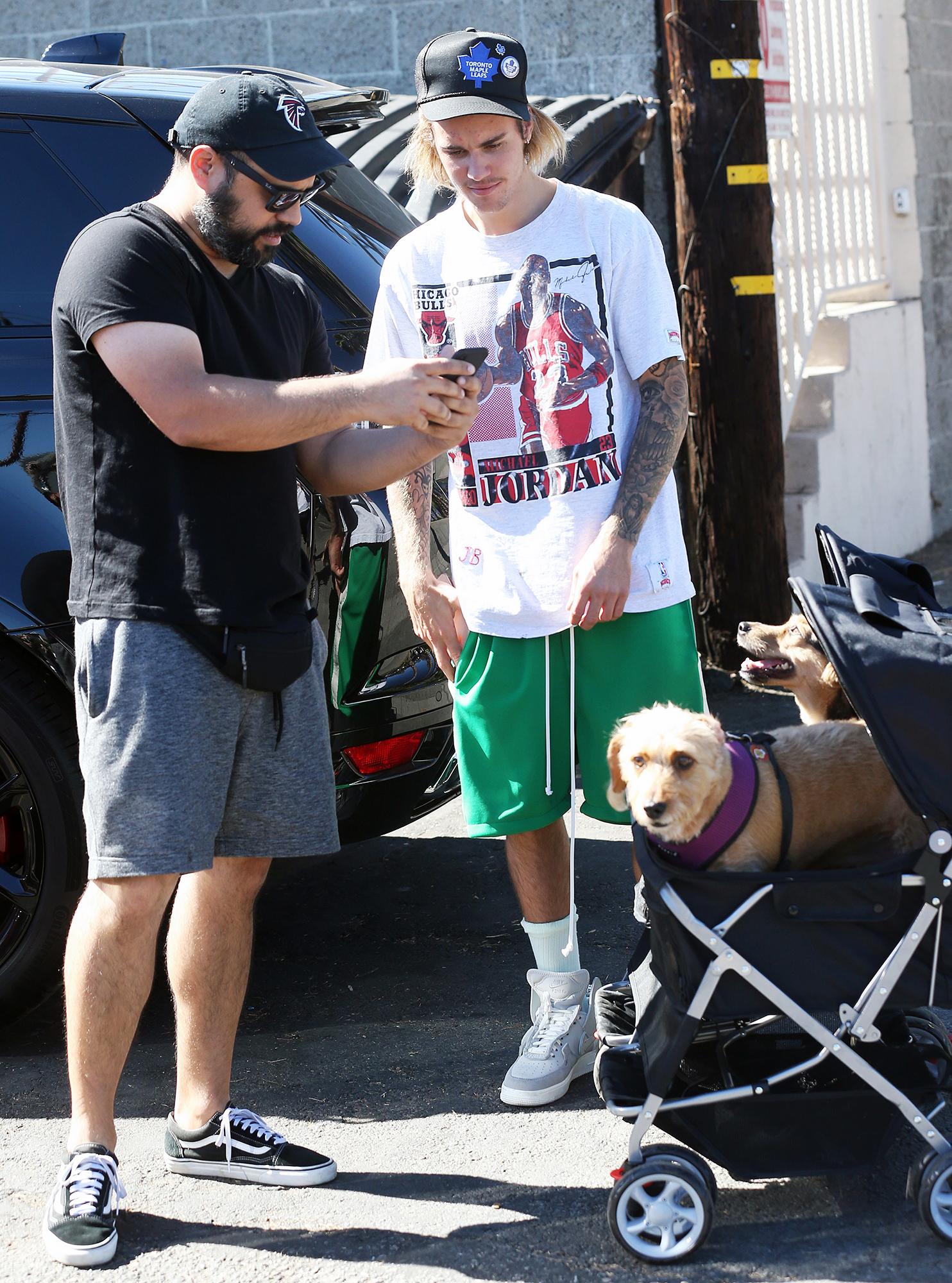 Justin Bieber Dogs Baby Stroller