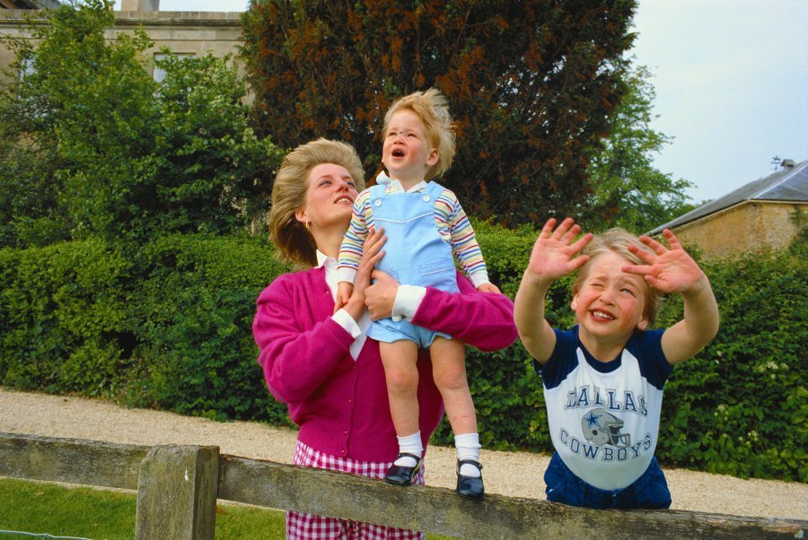 prince harry prince william cutest moments