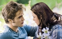 Things You Didn't Know About Twilight