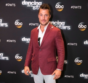 Chris Soules pleads guilty