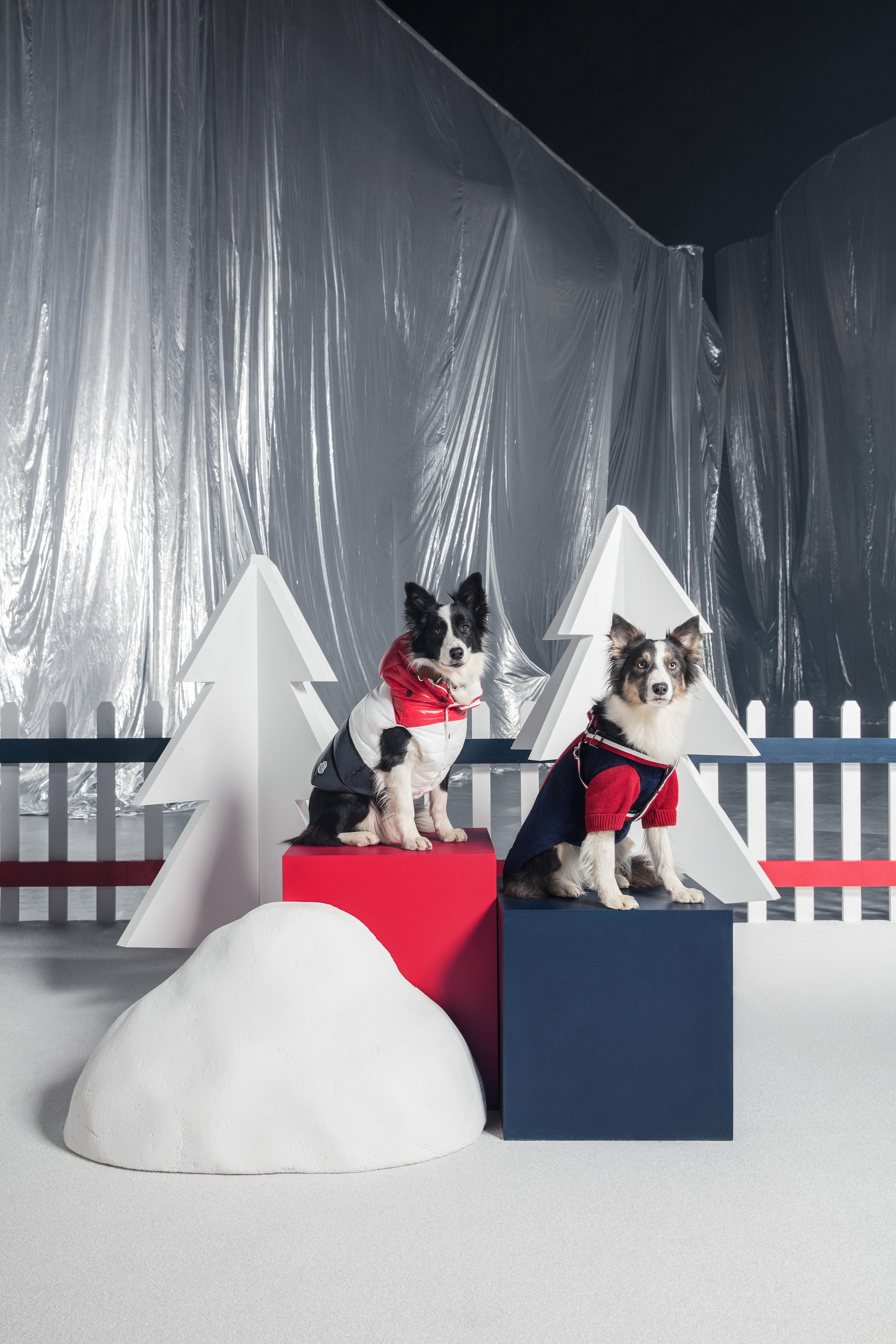 99f21586588c Moncler Poldo Dog Couture Coats