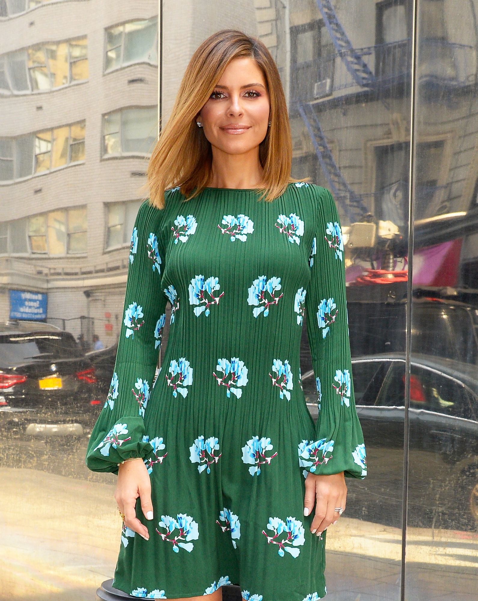 Maria Menounos - The TV personality and her husband, Kevin Undergaro, hope to welcome a child via a surrogate. Pal Kim Kardashian, who used a surrogate with her third child, has been walking Menounos through the process.