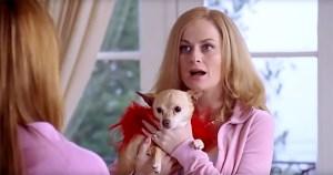 Amy Poehler in Mean Girls