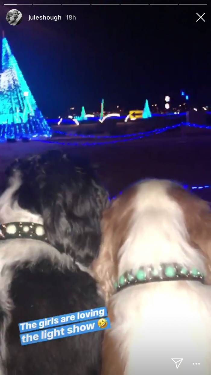 Julianne Hough's Dogs Love Holiday Lights Even More Than Us