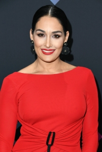 Nikki Bella Wants to 'Live a Real Single Life'