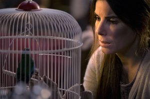 Sandra Bullock Defended by Fans Who Say She's More Than 'That Lady From Bird Box'