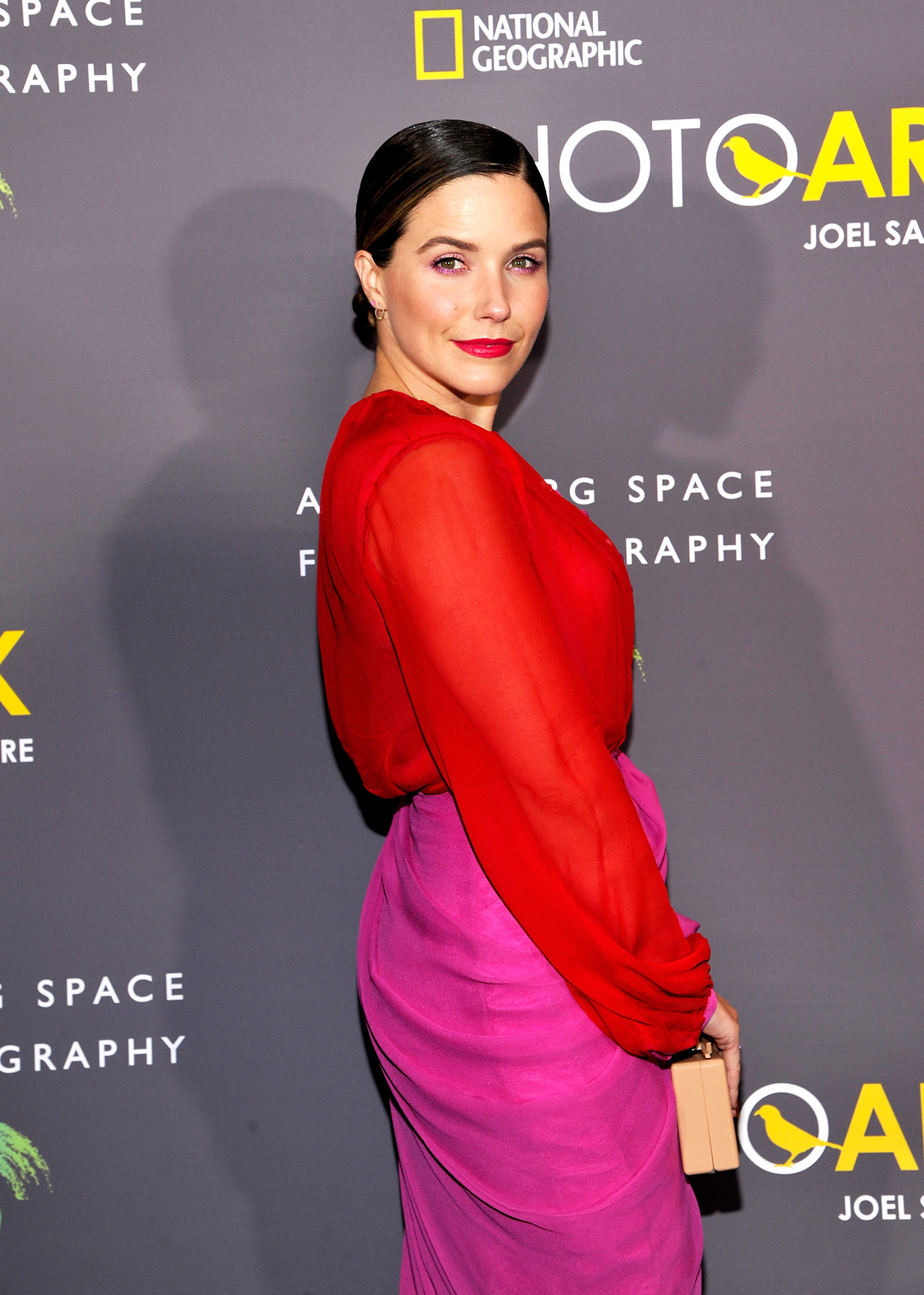 Sophia Bush - Sophia Bush attends the National Geographic Photo Ark at Annenberg Space For Photography on October 11, 2018 in Century City, California.