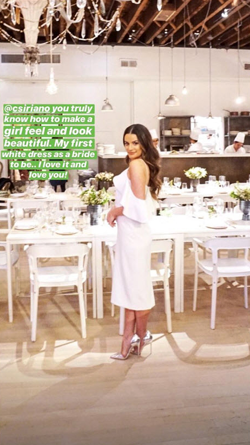 """Lea Michele and Fiance Zandy Reich - The Bronx born Broadway alum was picture-perfect in her Christian Siriano gown. """"@csiriano you truly know how to make a girl feel and look beautiful,"""" Michele gushed alongside a photo of herself."""
