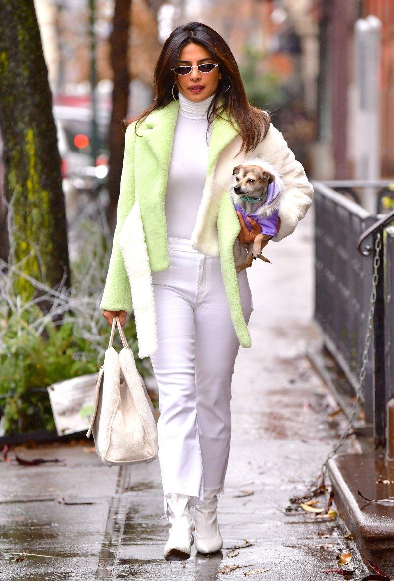 priyanka-chopra with dog and green jacket