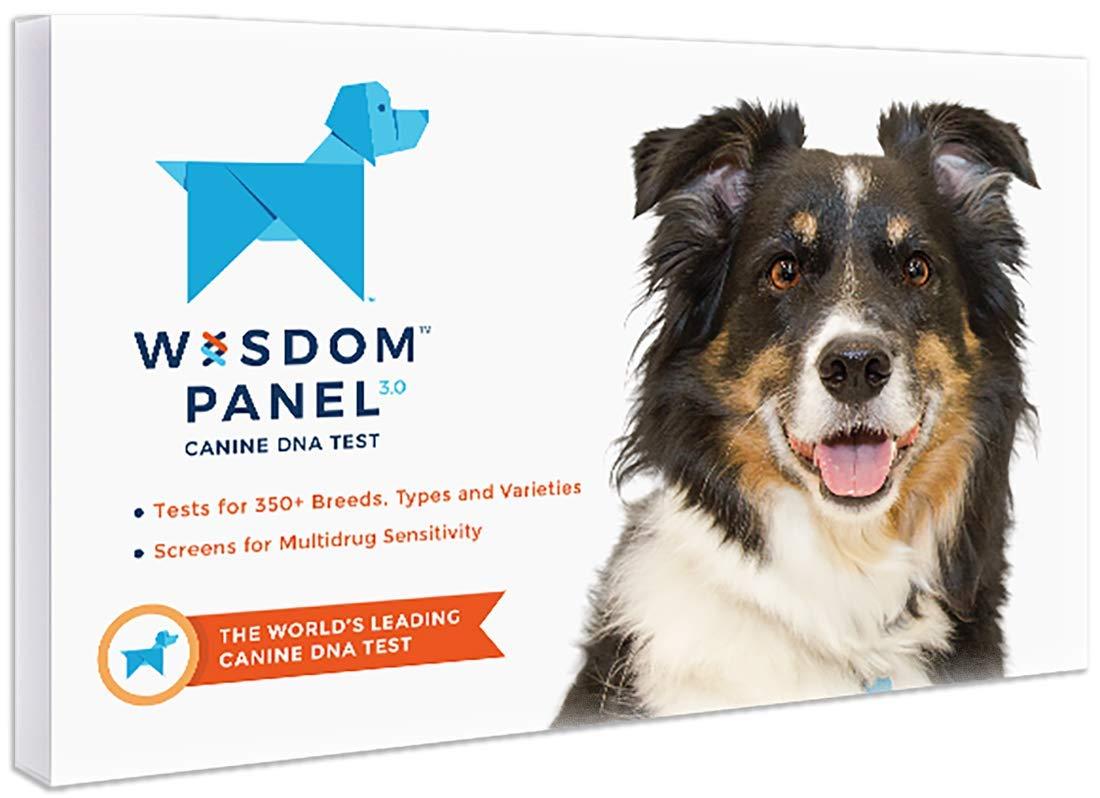Dog DNA Kit
