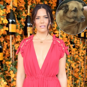 Mandy Moore's Dog Nearly Dies After Eating a Tennis Ball