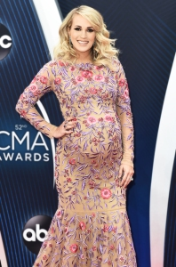 Pregnant Carrie Underwood Adopts a New Puppy: Find Out What Her Son Affectionately Named Him!