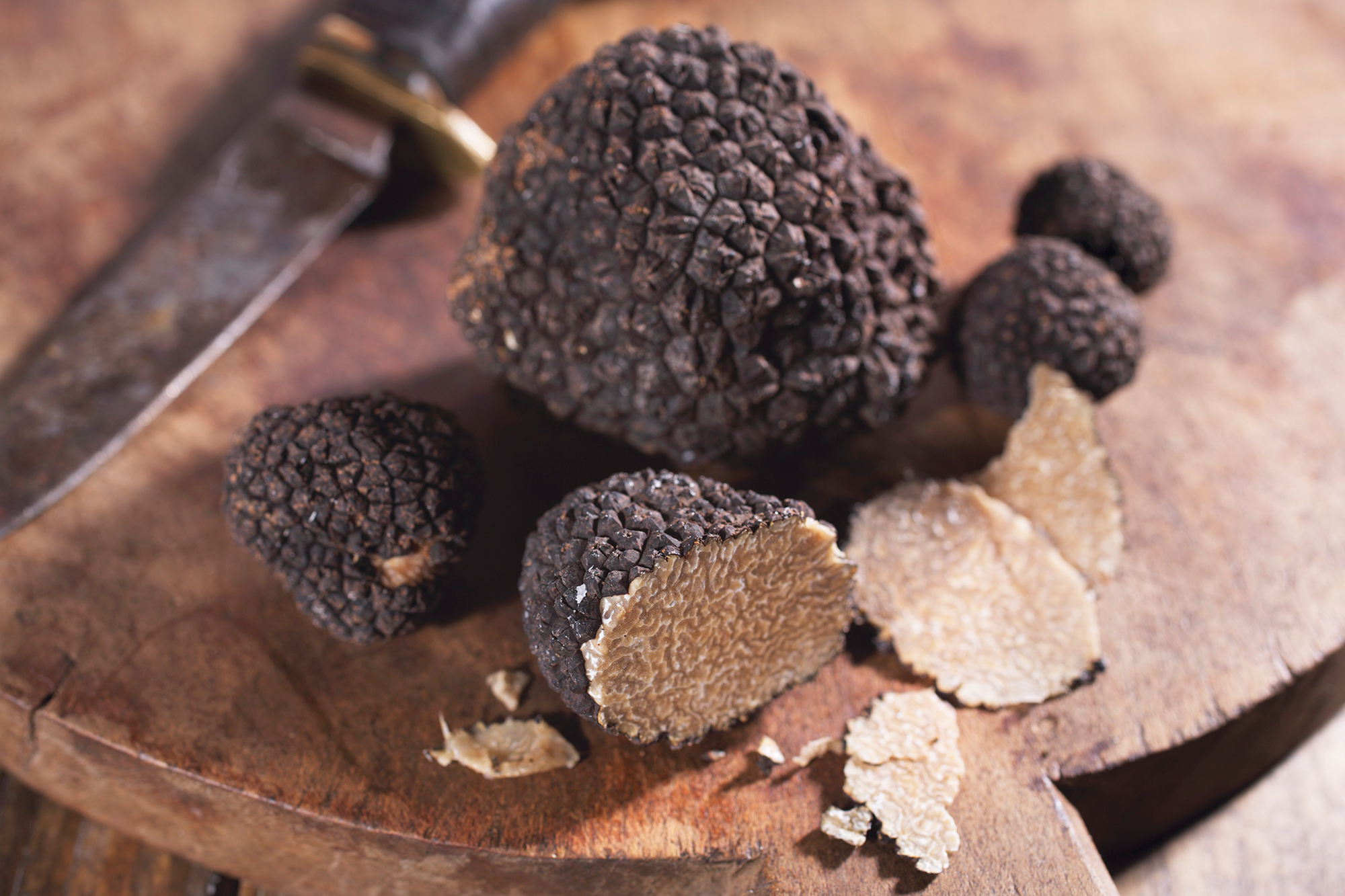 "Royal Family Food Facts - A Buckingham Palace source confirmed to Us Weekly that the prince recently became the first person in Britain to successfully grow his own black truffles after more than a decade of trying. The resulting crop was said to be ""highly successful."""