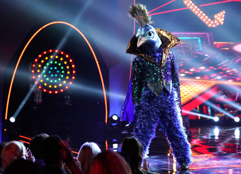 'The Masked Singer'