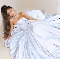Ariana Grande Poses Zac Posen Dress Instagram Grammys 2019