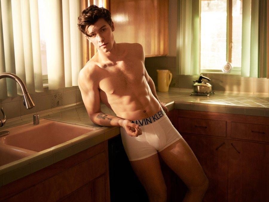 Celebs React to Shawn Mendes' Shirtless Calvin Klein Ads