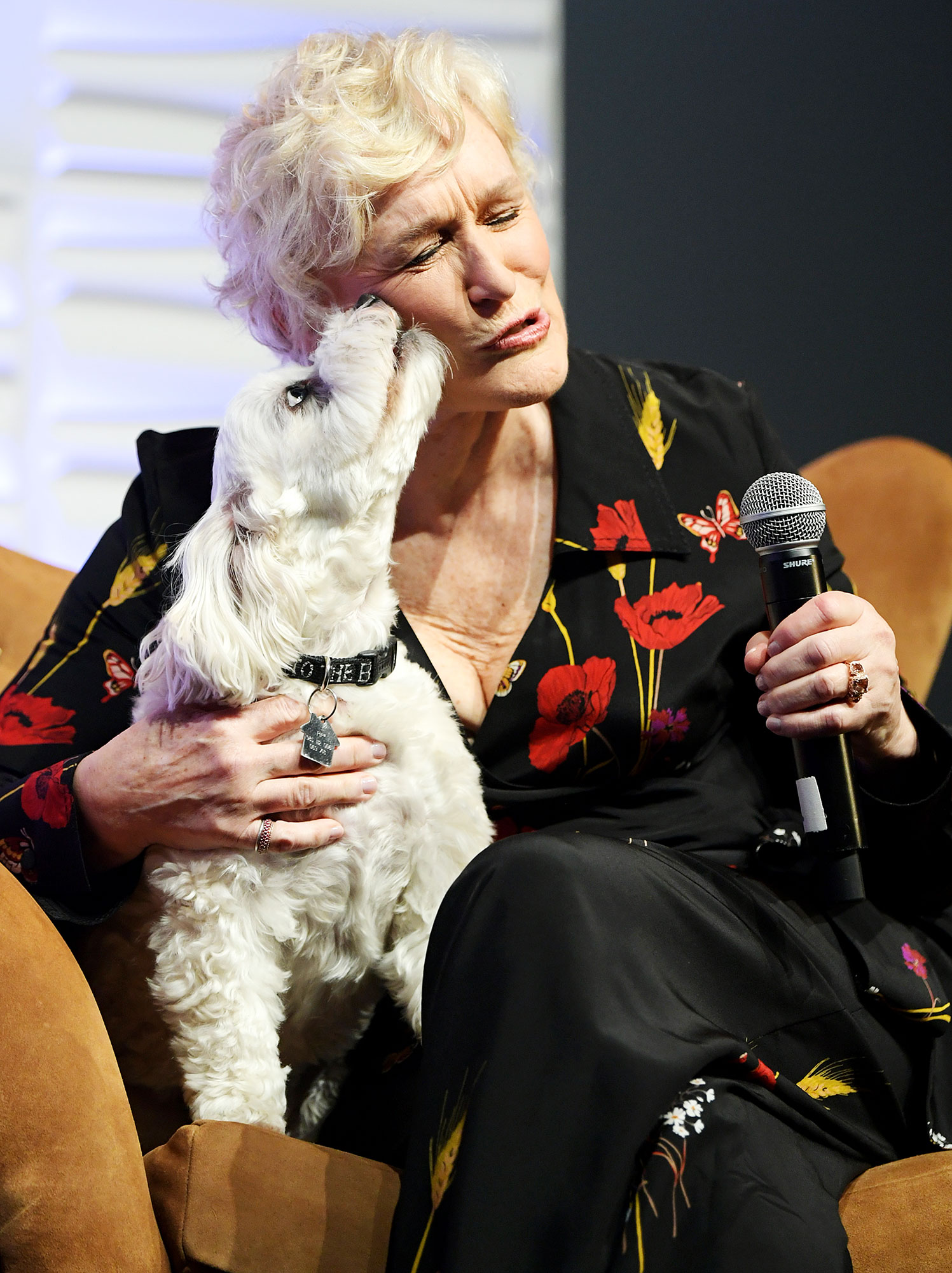 Glenn Close Sir Pippin of Beanfield Dog Oscars Rituals Grandmothers Ring - Glenn Close speaks onstage with her dog Sir Pippin of Beanfield at the Maltin Modern Master Award Honoring Glenn Close during the 34th Santa Barbara International Film Festival at Arlington Theatre on February 2, 2019.