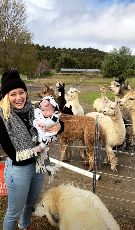 Hilary-Duff-Gets-Alpaca - Duff held Banks up in front of a group of alpacas who clamored for the family's attention.
