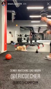 Eric Decker's Dog Accompanies Him to a Workout at shawn Booths gym