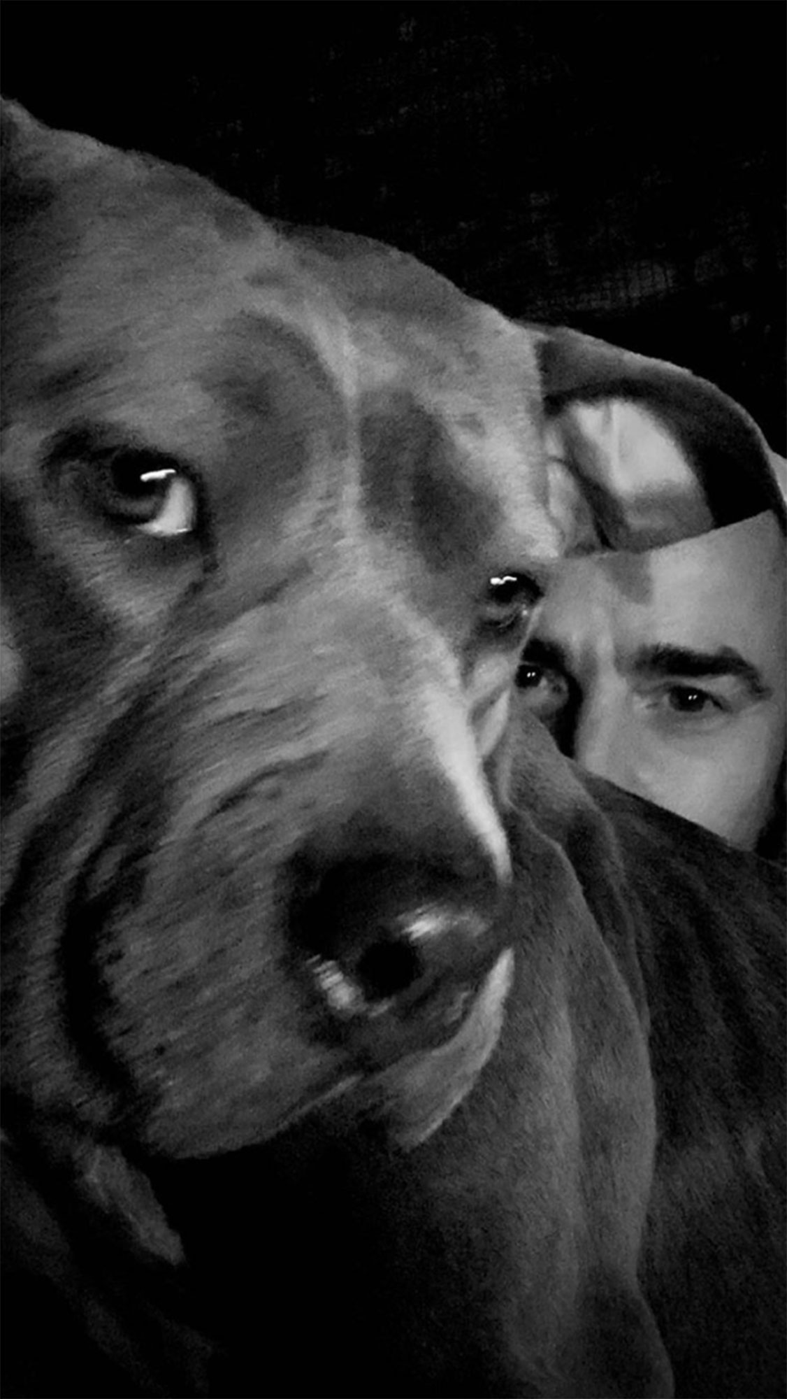 Justin Theroux Has a Lady and the Tramp-Style Date Night With His Dog - Justin Theroux and his dog